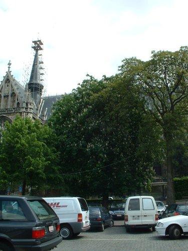 Marronnier commun – Bruxelles, Place du Grand Sablon –  15 Mai 2002