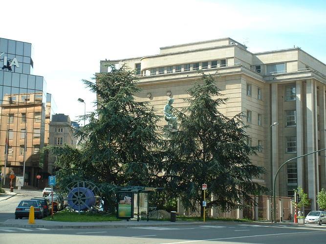 Blauwe ceder – Brussel, de Berlaimontlaan, 60 –  16 Mei 2002
