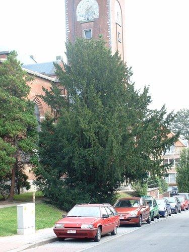 If commun – Woluwé-Saint-Pierre, Rue Félix Poels –  02 Octobre 2002