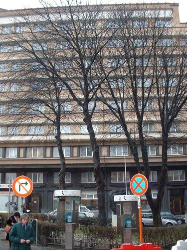Marronnier à fleurs rouges – Ixelles, Rue des Cygnes –  05 Février 2003