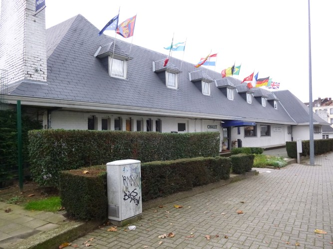 Cèdre de l'Himalaya – Molenbeek-Saint-Jean, Avenue Mahatma Gandhi –  17 Octobre 2014