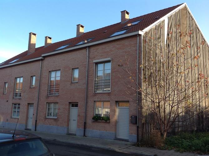 Frêne commun – Ganshoren, Rue Communale –  06 Décembre 2013