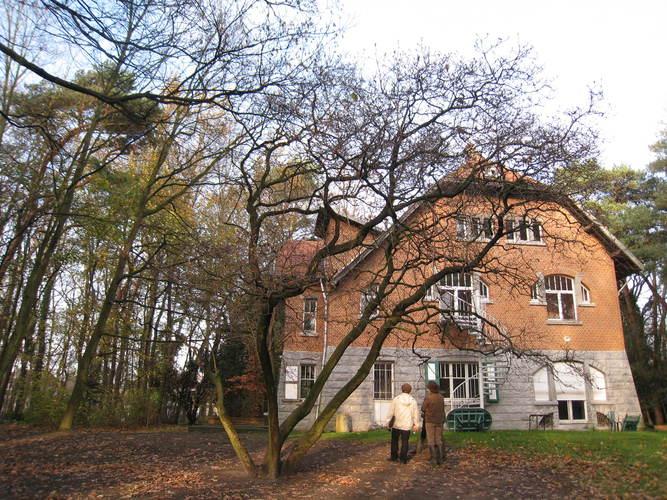 Magnolier de Soulange – Woluwé-Saint-Lambert, Moulin de Lindekemaele et abords, Avenue Jean-François Debecker, 38-40 –  01 Décembre 2009