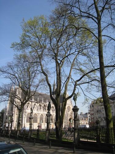 Erable plane – Bruxelles, Square du Petit Sablon , Place du Petit Sablon –  09 Avril 2010