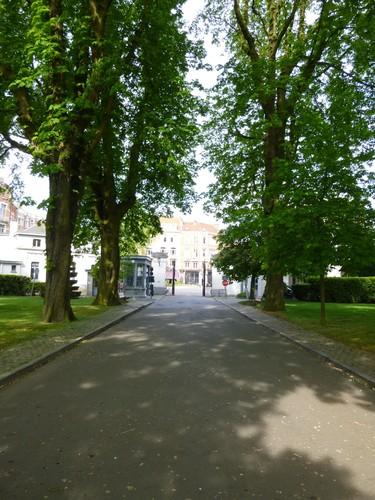 Marronnier commun – Ixelles, Cimetière d'Ixelles, Avenue de l'Université –  17 Avril 2014