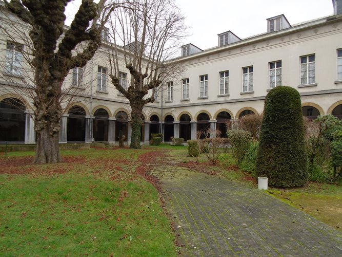 Marronnier commun – Bruxelles, Jardins de l'Hospice Pachéco, parc privé –  24 Février 2018