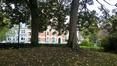 Acer pseudoplatanus 'Purpurascens' – Ixelles, Jardins de l'Abbaye de la Cambre –  24 Octobre 2017