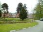 Araucaria du Chili – Molenbeek-Saint-Jean, Chaussée de Ninove, 1005 –  23 Avril 2012