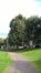 Sorbus aria f. lutescens – Schaerbeek, Avenue Huart Hamoir et Square Riga, Avenue Huart Hamoir –  24 Septembre 2015
