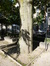 Ailante glanduleux – Schaerbeek, Place de Jamblinne de Meux, Place de Jamblinne de Meux, face 33 –  29 Septembre 2015