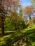 Platane à feuille d'érable – Uccle, Ancienne propriété Buyssens, Avenue Fond'Roy, 77 –  10 Avril 2014