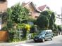 Sophora japonica f. pendula – Uccle, Avenue Beau-Séjour, 87 –  07 Août 2007