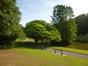 Catalpa à feuilles d'or – Watermael-Boitsfort, Parc du Leybeek –  06 Août 2015