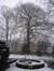 Hêtre pourpre – Woluwé-Saint-Lambert, Propriété Voot, Rue Voot, 67 –  13 Janvier 2010