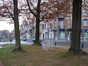 Erable plane – Schaerbeek, Avenue Rogier, 232 –  18 Avril 2002