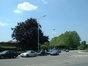 Hêtre pourpre – Evere, Avenue du Cimetière de Bruxelles, 157 –  17 Juin 2002