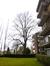 Tilleul à petites feuilles – Watermael-Boitsfort, Avenue Léopold Wiener, 85 –  21 Février 2014
