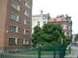 Magnolier de Soulange – Saint-Gilles, Square Charles Jordens –  05 Août 2002