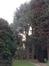 Blauwe ceder – Ganshoren, Georges Simpsonstraat, 44 –  09 December 2013