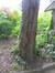 If commun – Jette, Place de la Grotte et jardin public, Rue Léopold I –  26 Mai 2016