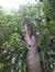 Treurbeuk – Ukkel, Voormalig eigendom Pirenne, Floridalaan, 127 –  13 September 2007