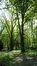 Zomerlinde – Ukkel, Domein Latour de Freins, Engelandstraat, 555 –  20 April 2017