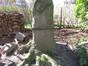 Hêtre pleureur – Woluwé-Saint-Lambert, Avenue Marie-José, 127 –  26 Mars 2012