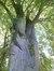 Charme commun – Uccle, Parc de la villa Bloemenwerf, Avenue Vanderaey, 102 –  28 Septembre 2012