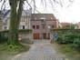 Hêtre pourpre – Woluwé-Saint-Lambert, Parc de Roodebeek, Chaussée de Roodebeek –  19 Juin 2013