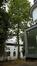 Platane à feuille d'érable – Ixelles, Avenue du Bois de la Cambre, 218 –  11 Août 2016