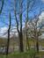 Châtaignier – Woluwé-Saint-Pierre, Parc Parmentier, Avenue de Tervueren –  13 Avril 2021