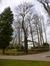 Tamme kastanje – Jette, Park van de Sans Souci kliniek, Wereldtentoonstellingslaan, 218 –  06 Maart 2015