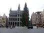 Sapin de Vancouver – Bruxelles, Grand-Place, Grand-Place –  23 Novembre 2016