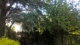 Uccle Jardin de la villa Coene Avenue Jean et Pierre Carsoel, 198