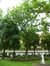Ixelles Square de Meeûs sur Ixelles