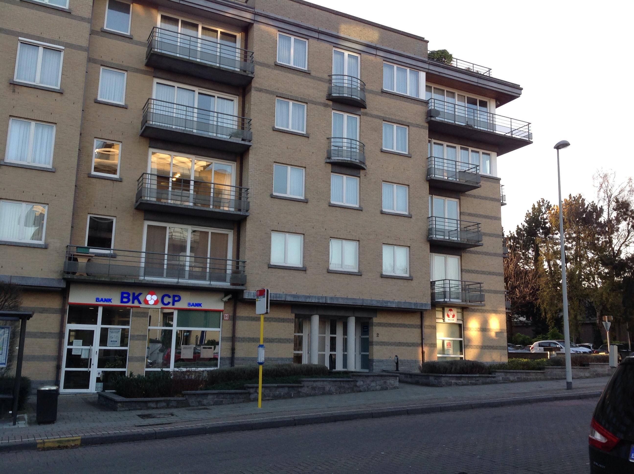 Châtaignier – Ganshoren, Avenue Louis De Brouckère, 2 –  06 Décembre 2013