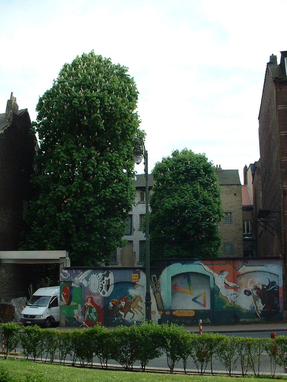 Marronnier commun – Saint-Josse-Ten-Noode, Rue Scailquin, 44 –  07 Mai 2002