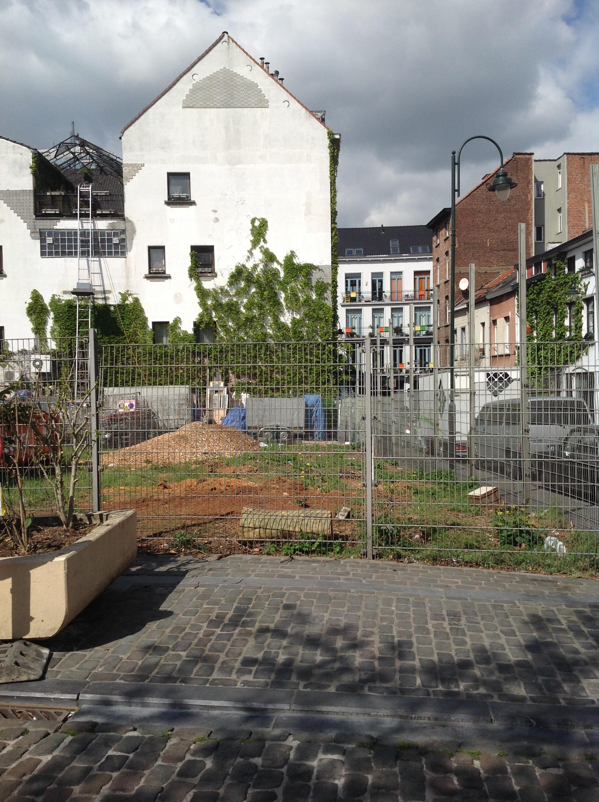 Peuplier de Simon – Bruxelles, Rue Sainte-Thérèse –  15 Avril 2014