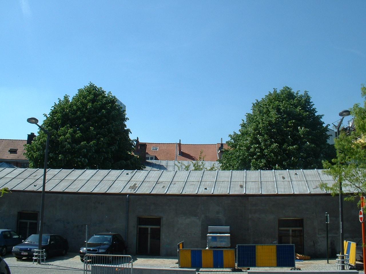 Tilleul argenté – Bruxelles, Rue des Fleuristes, 24 –  16 Mai 2002