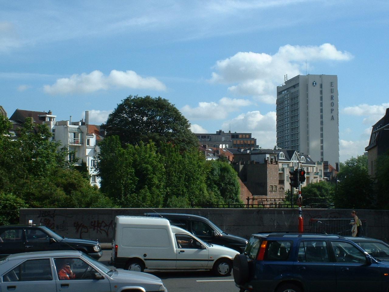 Erable sycomore – Bruxelles, Rue de Toulouse, 13 –  27 Mai 2002