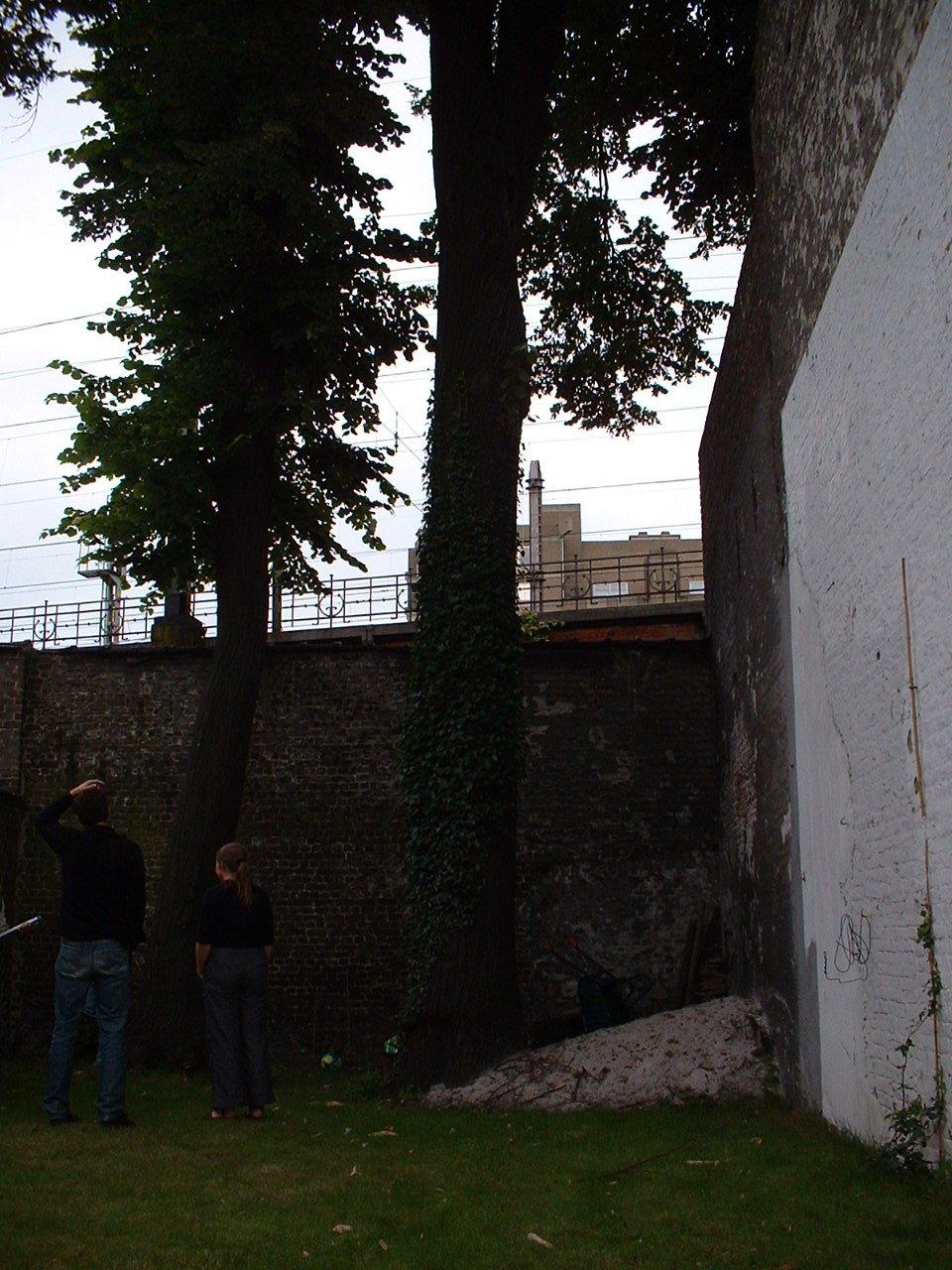 Tilleul commun – Bruxelles, Avenue de Stalingrad, 78 –  02 Juillet 2002