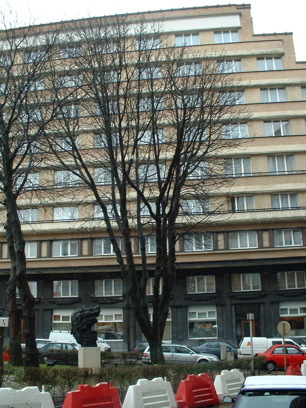 Marronnier commun – Ixelles, Rue des Cygnes –  05 Février 2003