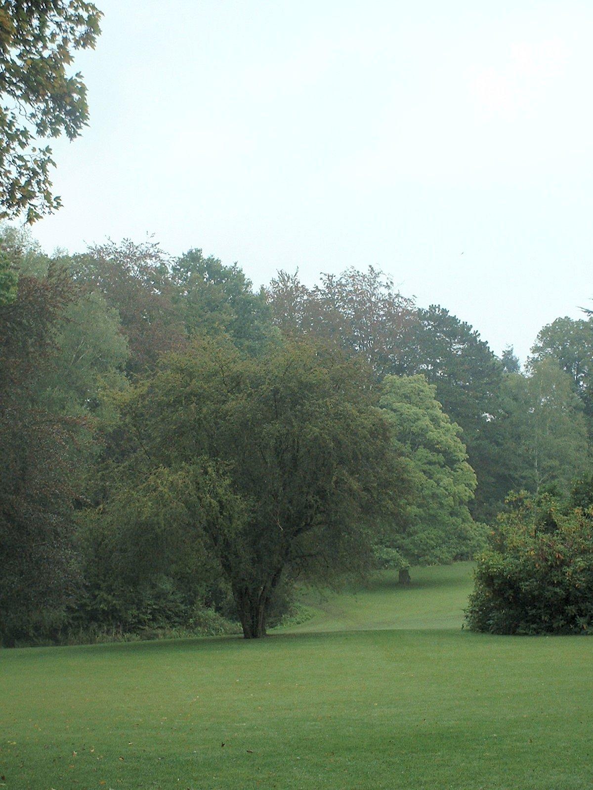 Aubépine à un style/ Epine blanche – Uccle, Propriété Fond'Roy, Avenue du Prince d'Orange, 49-51 –  27 Septembre 2004