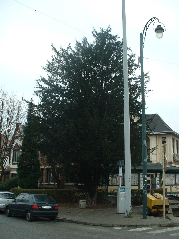 If commun – Schaerbeek, Boulevard Général Wahis, 55 –  02 Février 2007