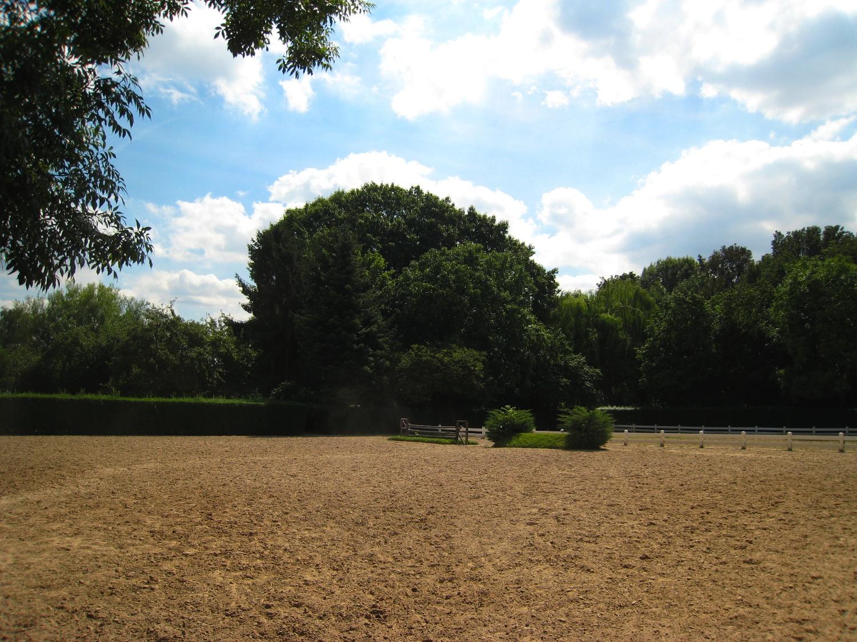 Chêne rouge d'Amérique – Woluwé-Saint-Pierre, Avenue Grandchamp, 228 –  03 Août 2007