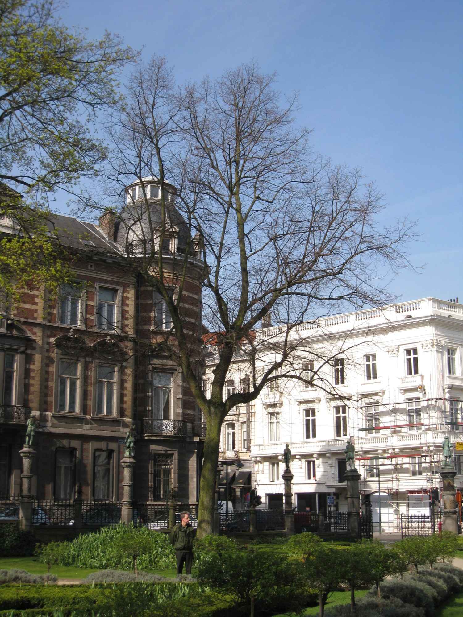 Tilleul à petites feuilles – Bruxelles, Square du Petit Sablon , Place du Petit Sablon –  09 Avril 2010