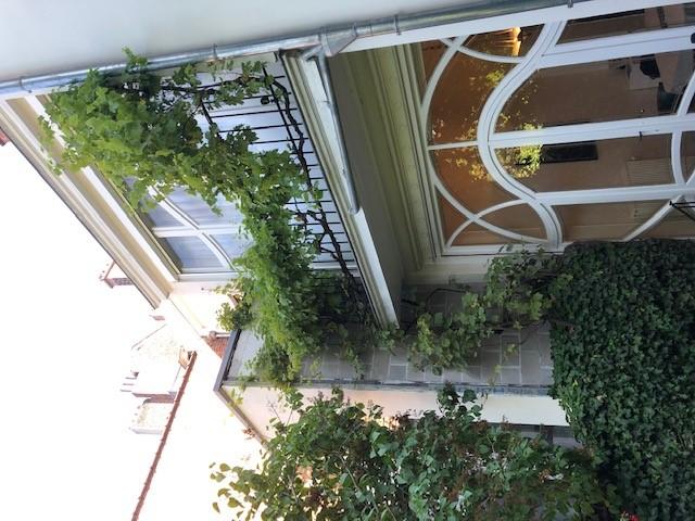Vigne cultivée – Saint-Gilles, Rue de la Victoire, 213 –  19 Août 2019